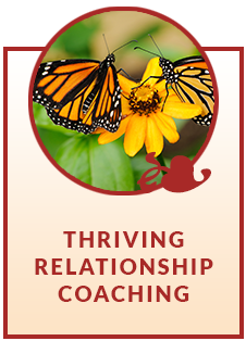 RelationshipCoaching